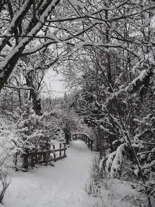 snowpath
